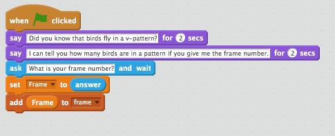 bird_code_pic